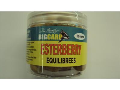 Equilibrees esterberry 16mm big carp big carp en vente for Vente grosse carpe